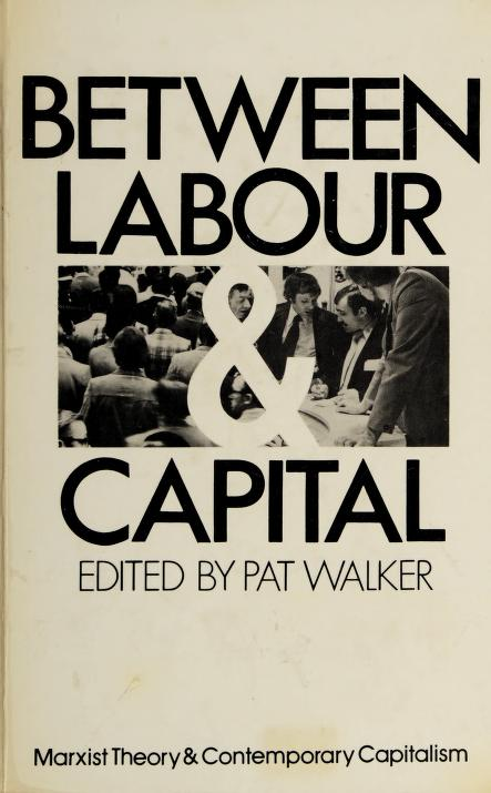 Between labour and capital (Marxist theory and contemporary capitalism) by